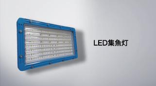 LED集魚灯